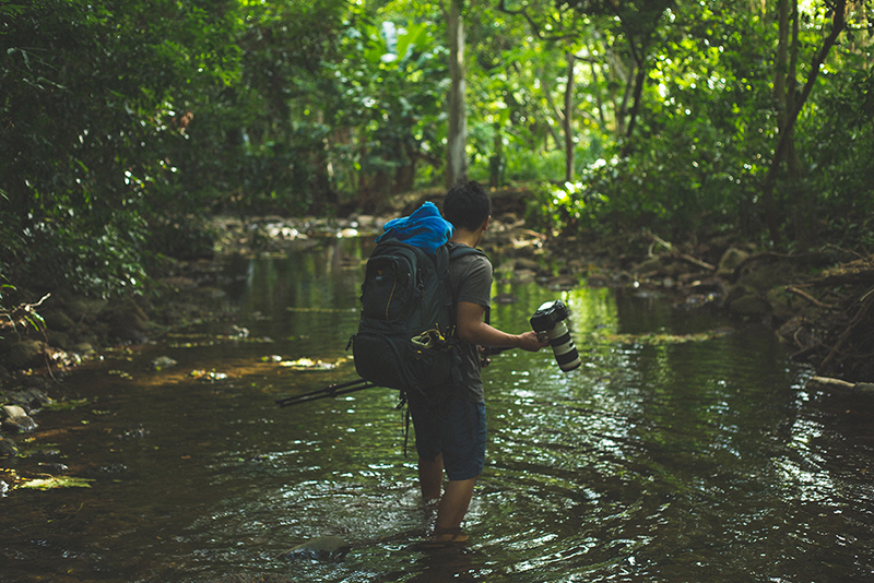Photographer with a tripod walking through a river in the jungle