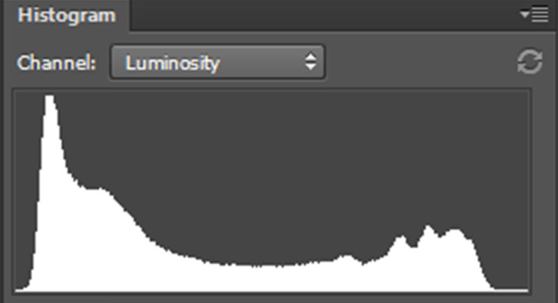 Luminosity histogram of a black and white image