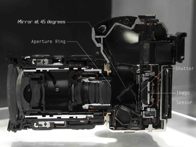Cross Section Of a DSLR camera showing the mirror, image sensor, shutter and the aperture