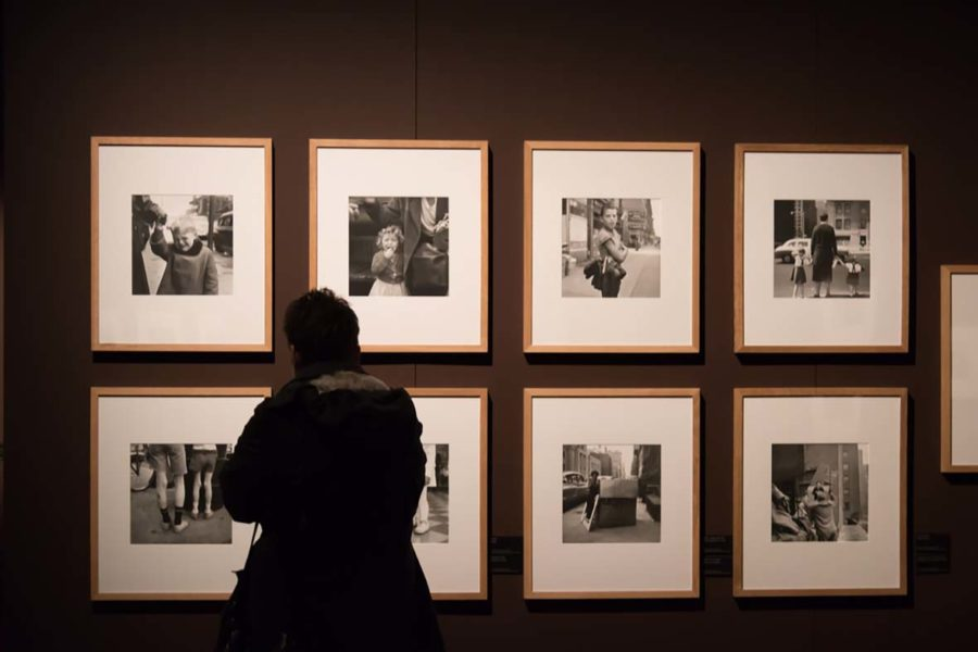 Photographs taken by Vivian on display in a gallery