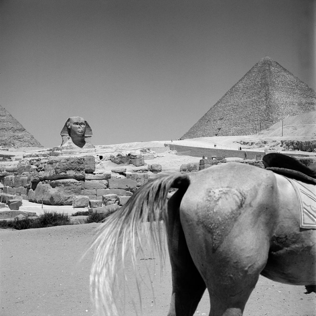 The Sphinx of Giza and the Pyramid of Khufu, 1959. Egypt