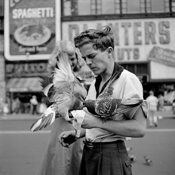A picture of a man feeding a pigeon from his hand USA