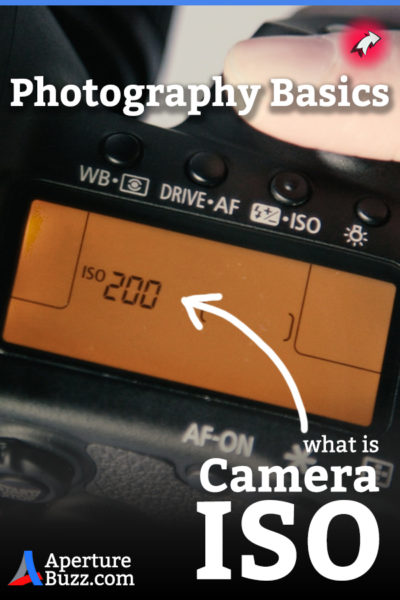 Photography Basics Camera ISO