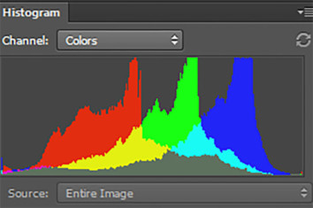 Colors RGB Histogram Of An Image Of A Bird